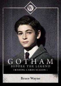 2016 Cryptozoic Gotham Bruce Wayne Bio