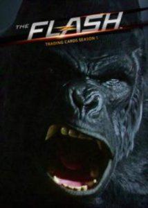 The Flash Promo Card 2