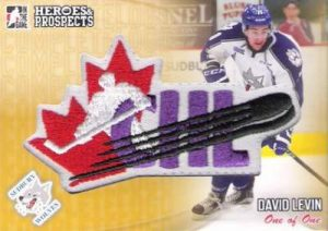 Heroes & Prospects Complete Logo Patch David Levin