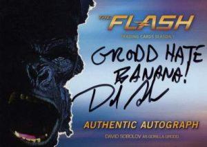 The Flash Grodd Auto