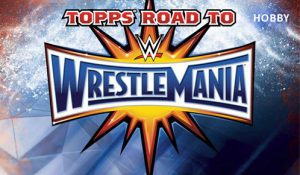 2017 Road to WrestleMania Banner