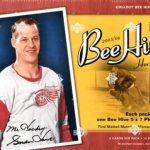 2005-06 Beehive Box