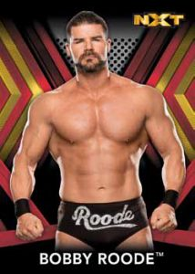 Base NXT Roster Bobby Roode