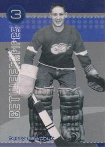 He Shoots, He Saves Points Terry Sawchuk