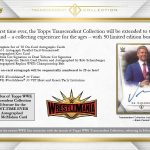 2019 Topps WWE Transcendent Collection