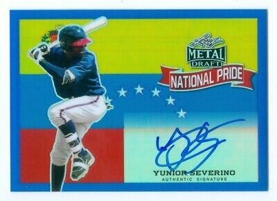 Metal National Pride Auto Yunior Severino