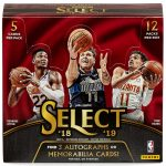 2018-19 Panini Select Basketball