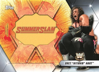 SummerSlam Manufactured Logo Relics