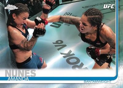 Base Amanda Nunes