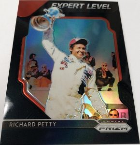 Expert Level Richard Petty