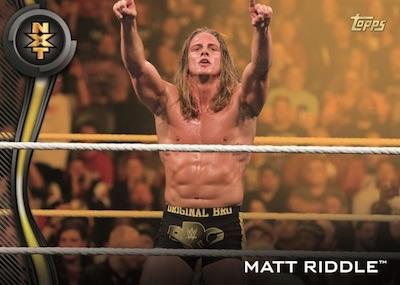 Roster Gold Matt Riddle MOCK UP