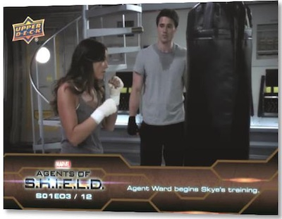 Base Agent Ward Begins Skye's Training MOCK UP