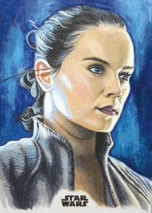 Sketch Rey