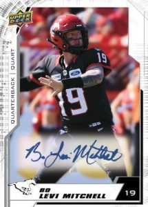 Base Auto Levi Mitchell MOCK UP