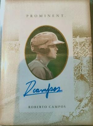 Prominent Auto Roberto Campos