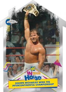 Best of In Your House Shawn Michaels MOCK UP